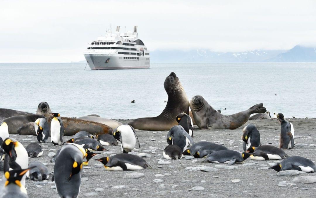 Antarctic expedition cruising